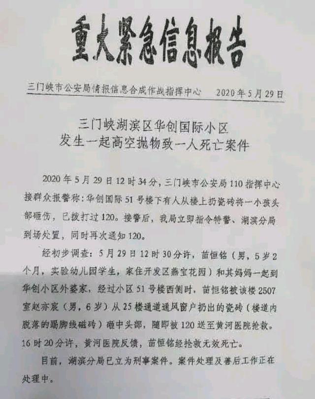 河南一5岁男童被瓷砖砸伤致死:初查系一6岁男童抛下