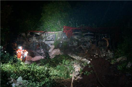 事发湘西,运载20头生猪货车深夜翻下陡坡,消防4小时紧急救援成功救出被困者