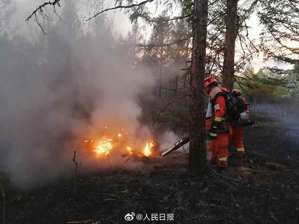 摩天测速:森林摩天测速火灾已合围火因图片
