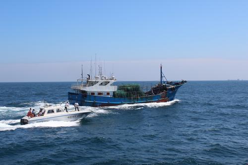 休渔近一个月,广东查获违反休渔制度案件391宗
