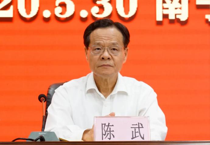 摩天注册:西壮族自摩天注册治区政府主席陈图片