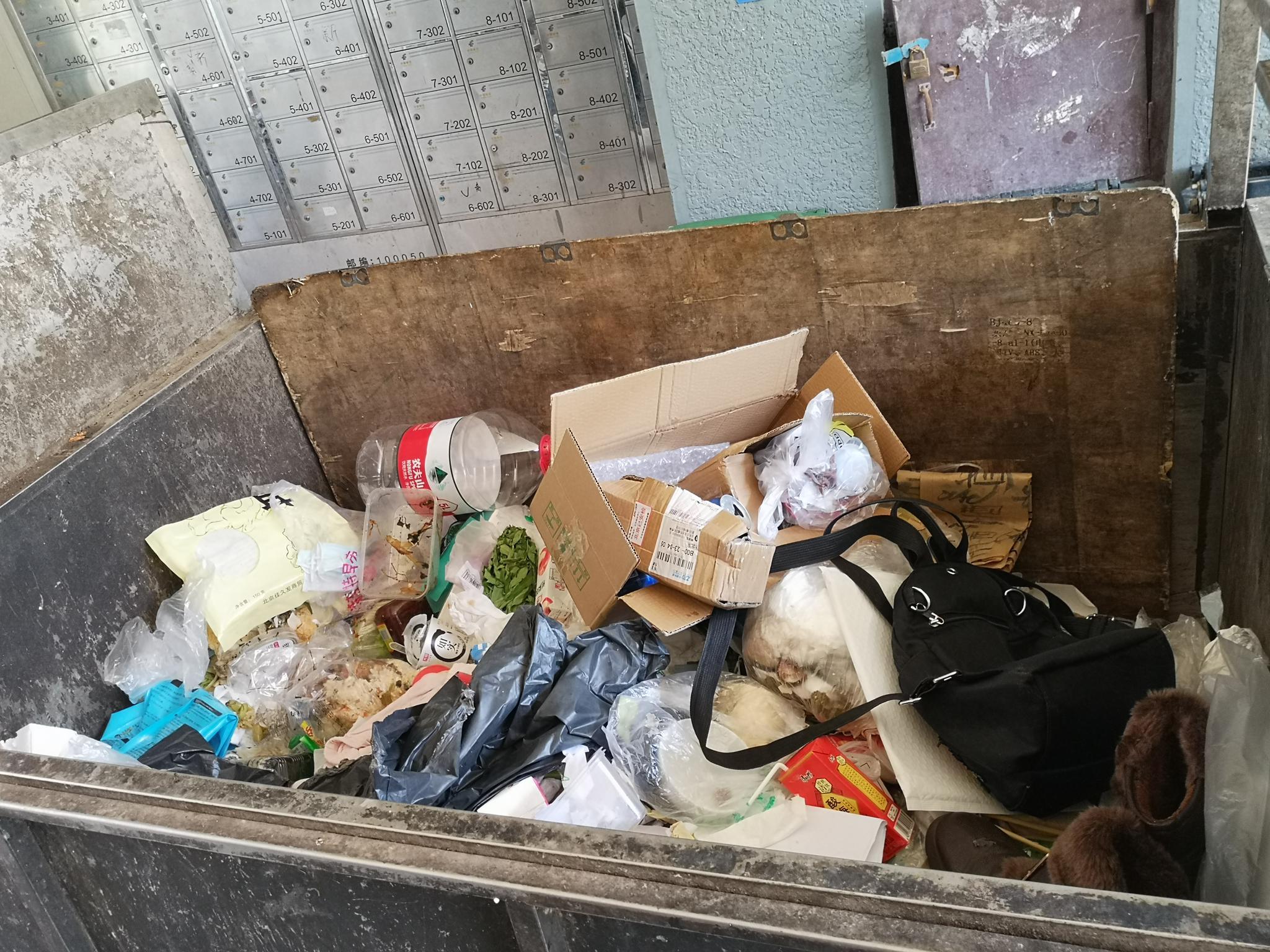 摩登4平台,北京摩登4平台多社区垃圾分类未落地图片