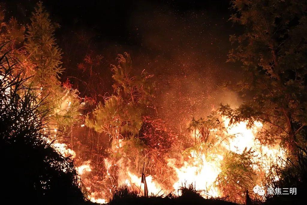 大田森林火灾已成功扑灭!这些森林火灾案例警示我们:森林防火时刻牢记!