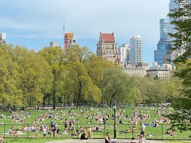 2日纽约市中央公园人满为患 推特图 下同