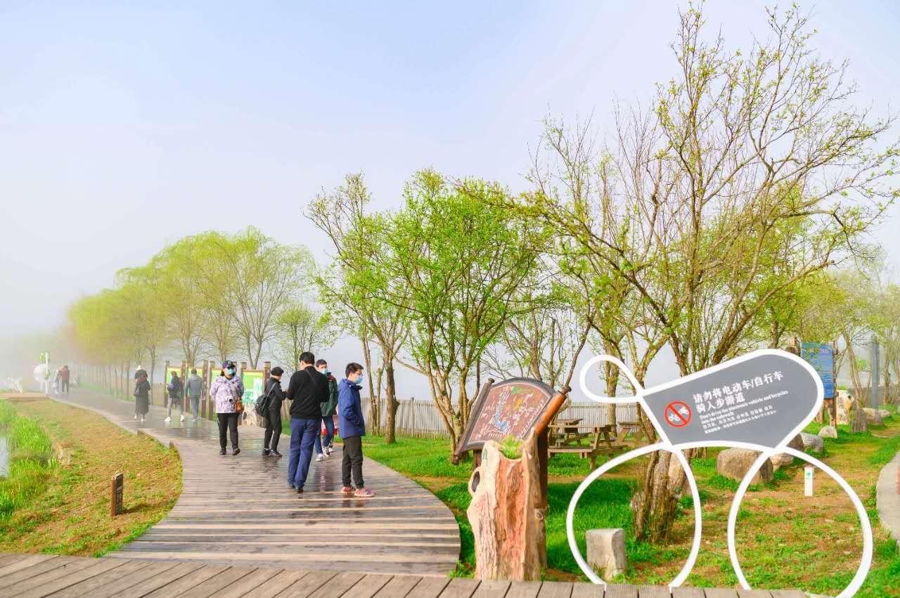 旅客闲步在神农架大九湖景区步道。图/资料图片