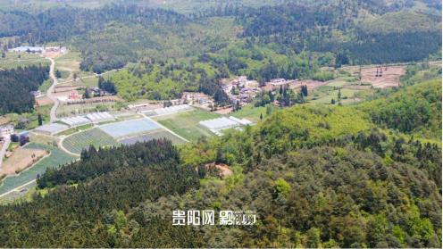 黔途五一去乌当百宜采茶叶!贵州省内小众旅游路线推荐