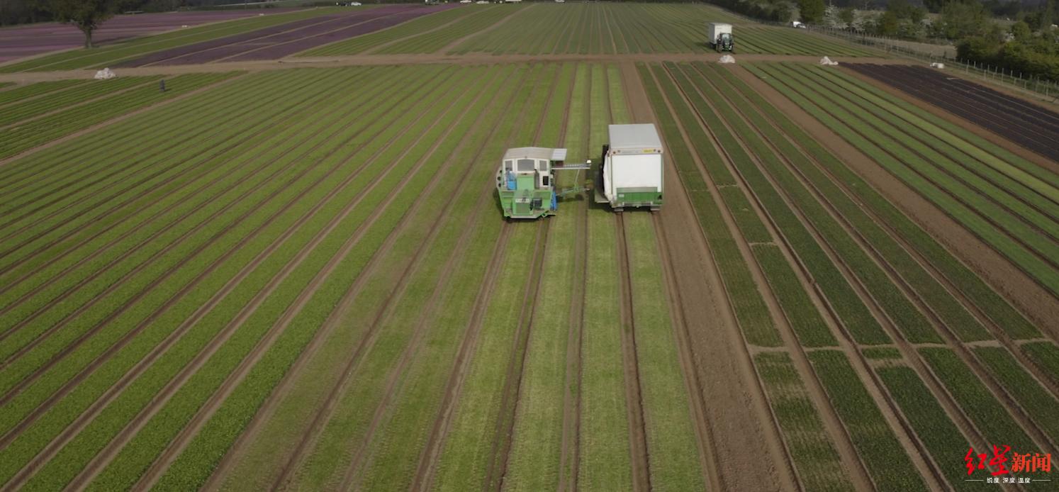 ▲做农活是一项艰苦繁重的工作,图据CNN