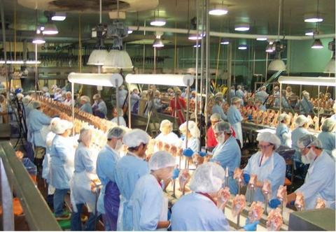 美国肉类加工业已有超1万名工人染疫。(图源:今日美国)
