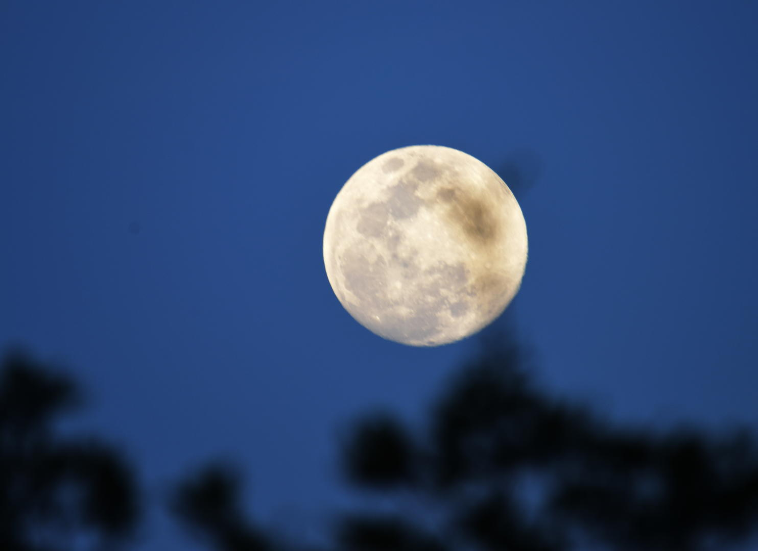 摩天测速:月亮今晚再现身今年最摩天测速后一次图片