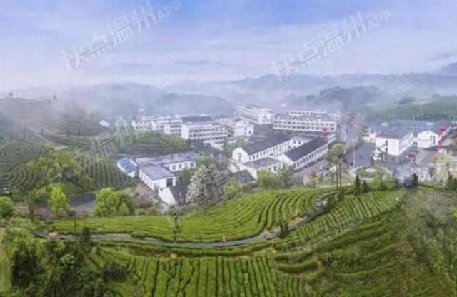 「快点融媒」单宗项目最高奖励110万苍南出台政策鼓励社会资本参与土地复垦