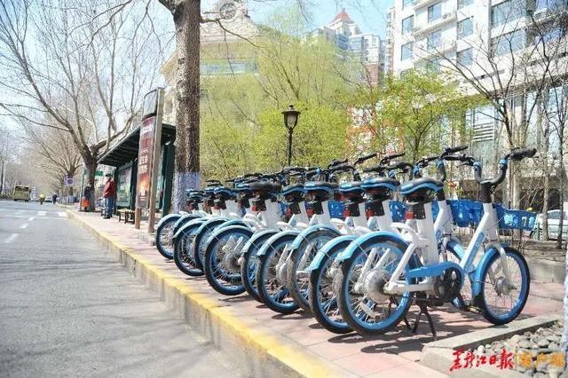 关注小蓝车|哈尔滨将统一划定共享单车专用泊位