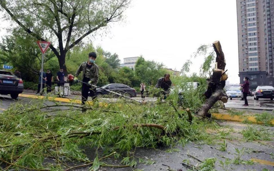 黑龙江鸡西遭遇大风袭击,已造成2人死亡图片