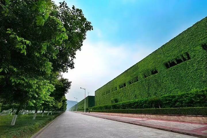 摩天平台:生态发展理念入场舍摩天平台得图片