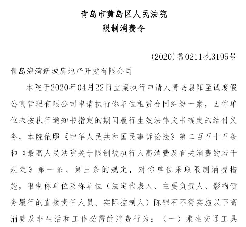 中南建设实际控制人陈锦石被法院下发限制消费令图片