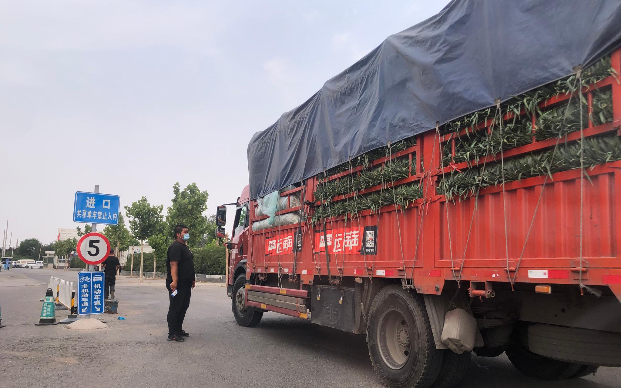 蔬菜临时交易区里已有运输车开进来交易。新京报记者 田杰雄 摄