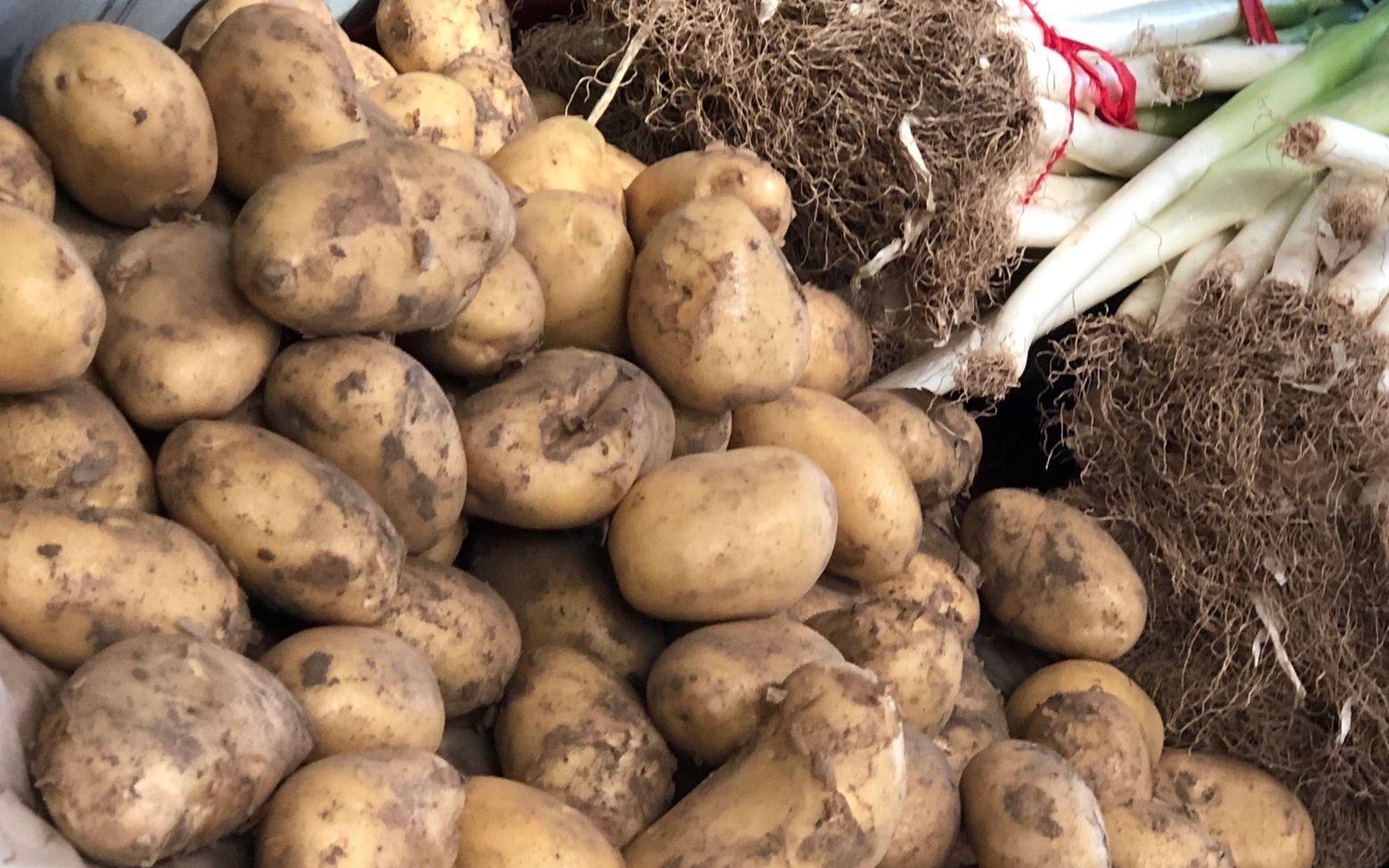 土豆黄瓜供应基本无缺口 北京商超:有能力平价足量供应图片