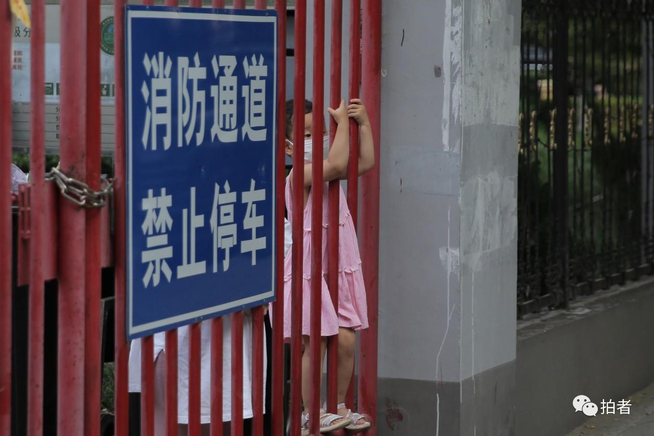 △6月13日,宜兰园小区,小同伙透过小区围栏向外观望。拍照/新京报记者郑新洽