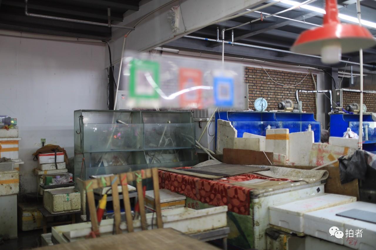△6月15日,海淀区西四环五孔桥市场,市场中水产摊位已停息业务。拍照/新京报记者浦峰