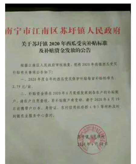 瓜田每亩补贴279元别天富官网把惠农变,天富官网图片