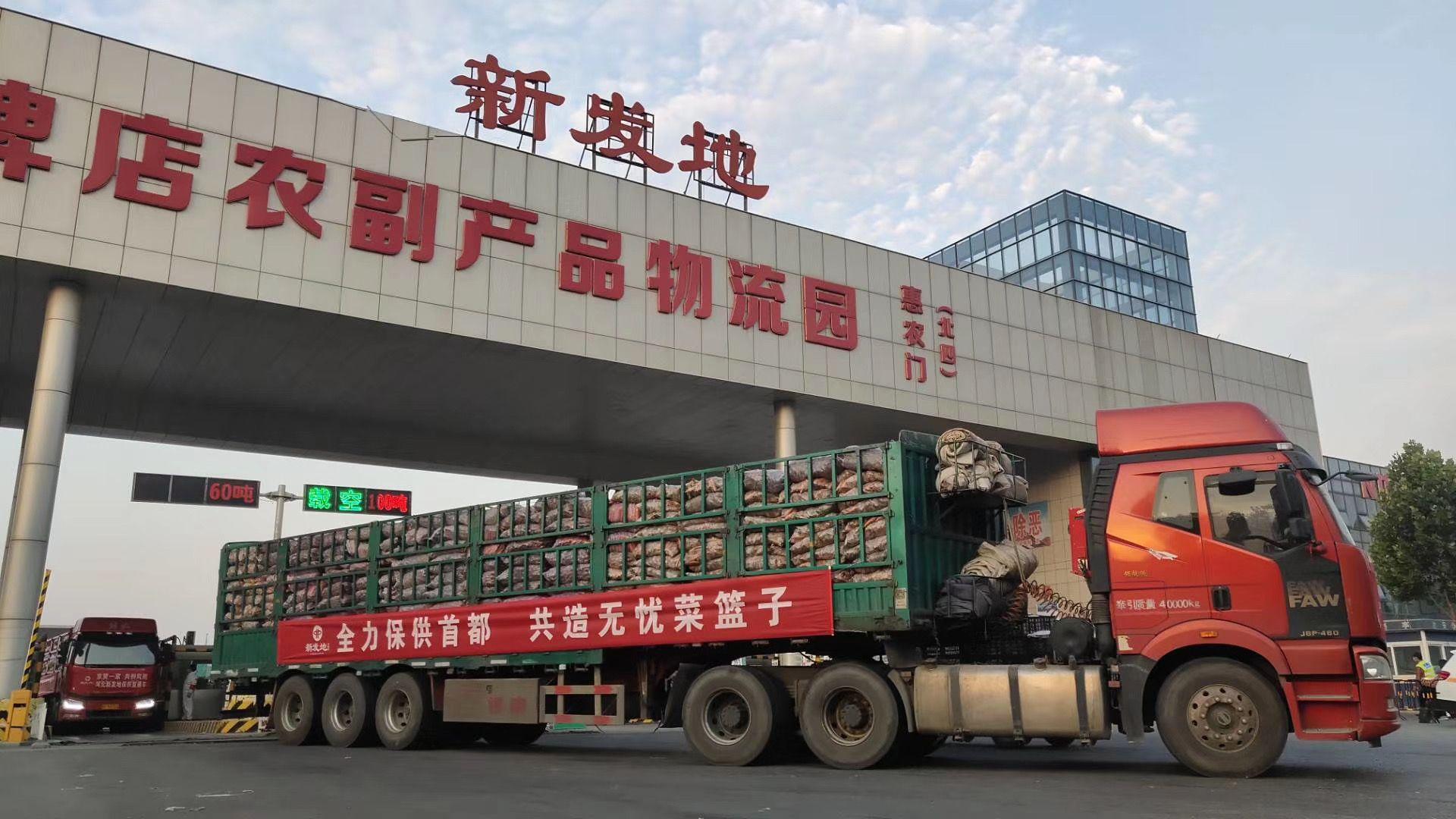 「摩天代理」批保供蔬菜摩天代理150吨图片