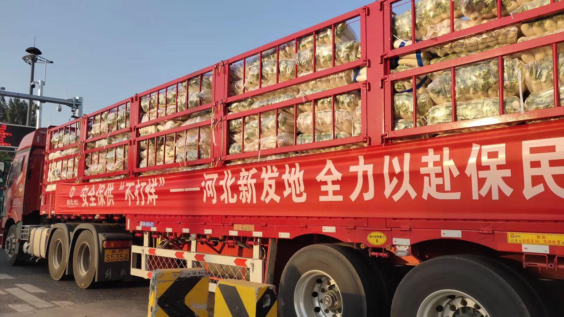 河北新发地首批150吨保供蔬菜,重要包罗白菜、圆白菜、土豆、洋葱、白萝卜、胡萝卜等品种。受访者供图