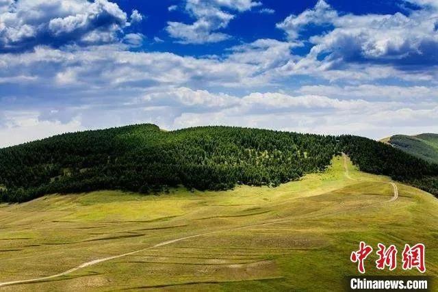 山西省吕梁市离石区西华镇草原。 山西省林业和草原局供图