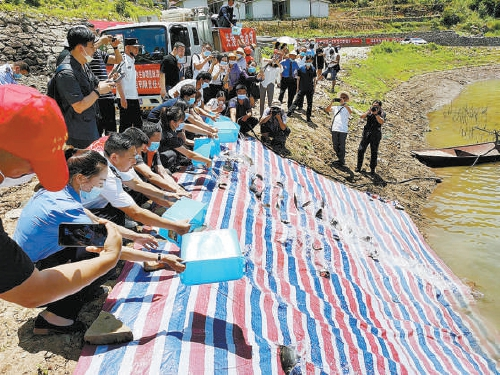 湖北长阳:宣判一刑事附带民事公益诉讼案图片