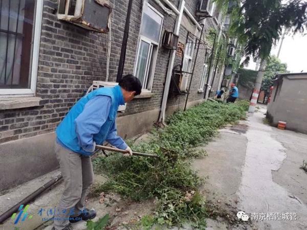 南京摩鑫测速启动环境整治,摩鑫测速图片