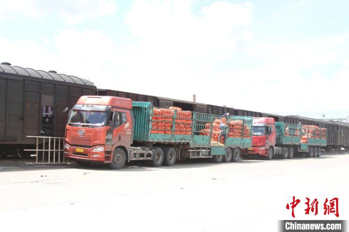 图为绥芬河站保障蔬菜品类货物顺利运输。 曲艺伟 摄