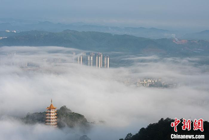 梧州城被平流雾笼罩,楼房若隐若现。 何华文 摄