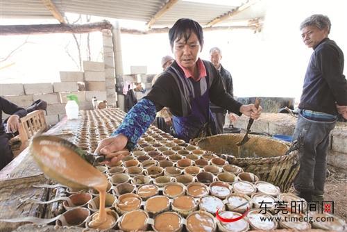 【杏悦官网】困县种养业发杏悦官网展步入快车图片