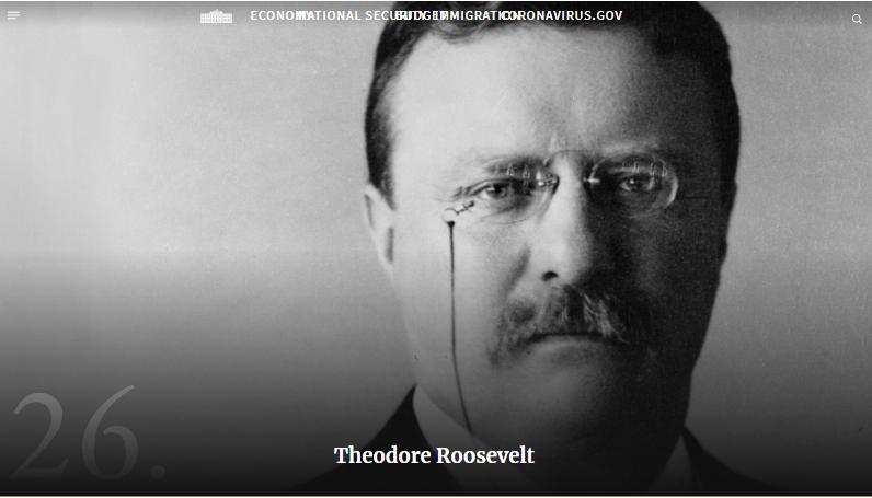 西奥多·罗斯福资料图,图源:美国白宫官网