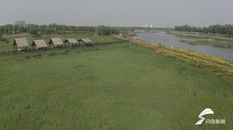 组图|威海南海新区金花河湿地公园景如画 等你打卡