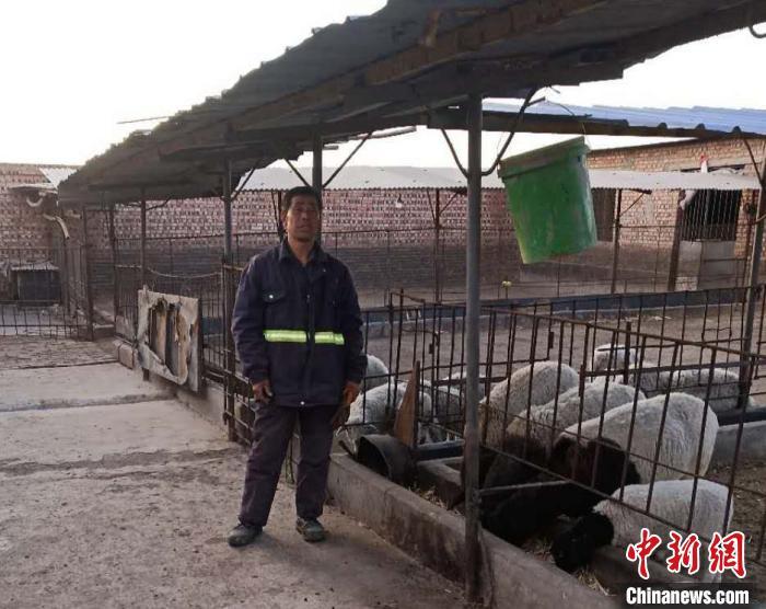 杨安华到养殖场照看羊群,抽水、扫粪、喂草,这些都是他每日要做的事。杨安华供图