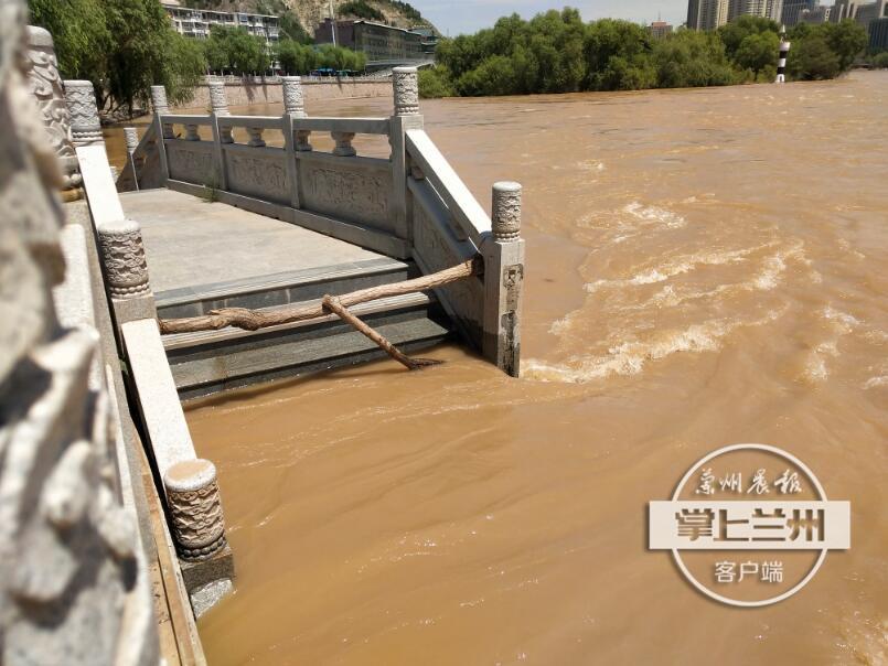 掌上兰州·兰州晨报记者踏访丨黄河涨水对黄河风情线各公园影响如何?