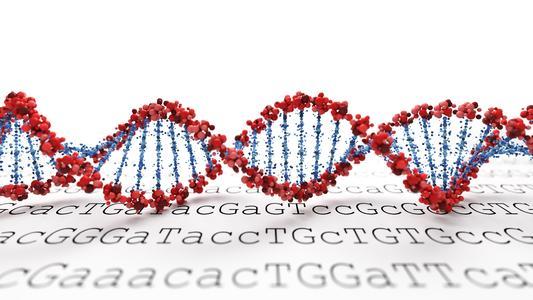 基因组学解决方案提供商联川生物获投1.15亿 实现一步法精准捕获目标基因
