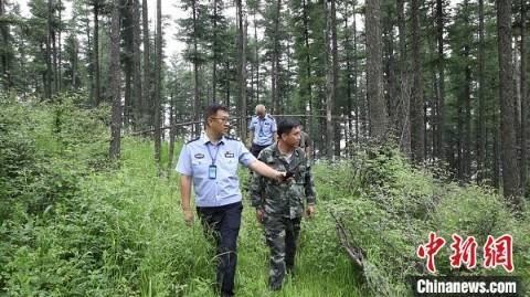 山西省林业和草原局要求,加强联防联护,依法严厉打击野外违规用火行为。山西省林业和草原局供图