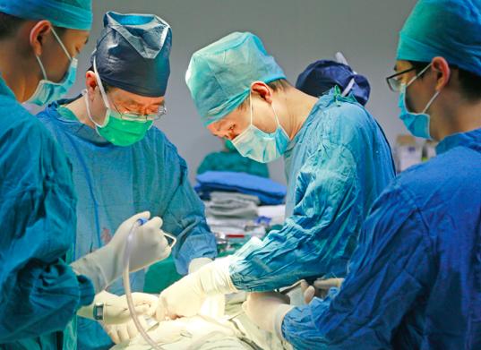 新突破,西京医院实施多基因编辑猪-恒河猴异种肝心肾器官移植
