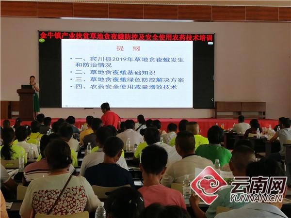 云南宾川:多举措推动产业扶贫落地见效