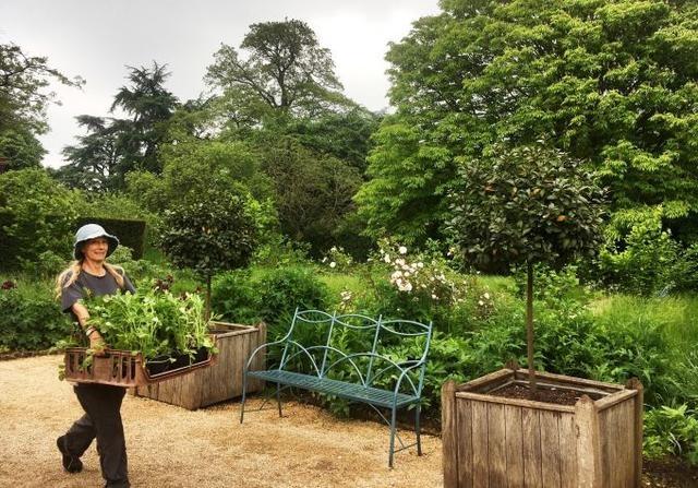 """居家隔离经历改变英国人对理想家园看法,后花园成第一""""要素"""""""