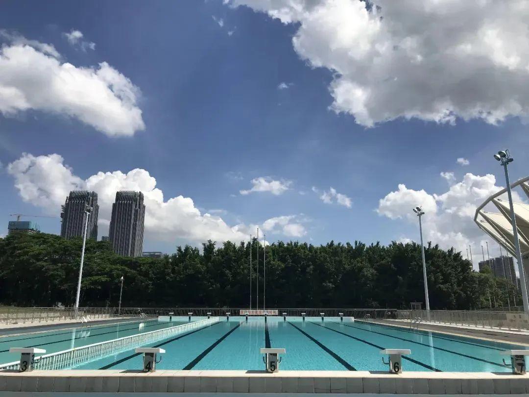 免费!世纪莲室外游泳池开放3个月,每天100个名额!预约方法→