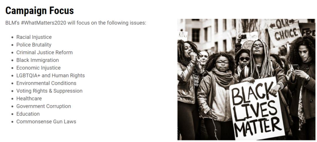 图片截取自黑人抗议组织网站
