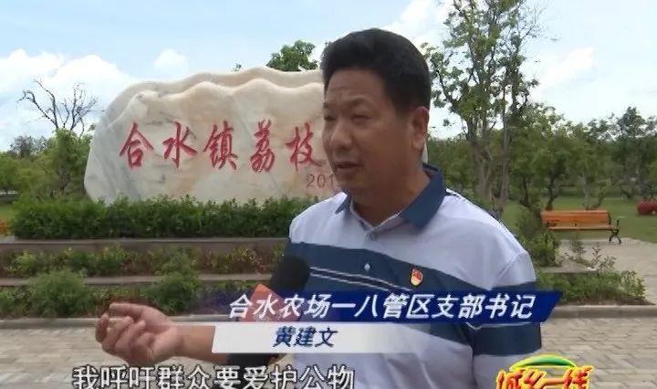 兴宁合水荔枝公园风景很迷人但有人做出这样的行为...!