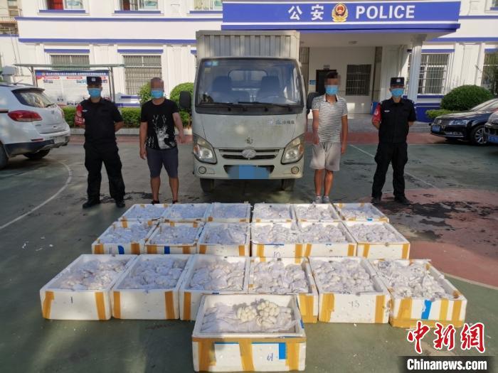 广西警方查获蛇蛋11595枚 两人涉嫌非法贩运被抓