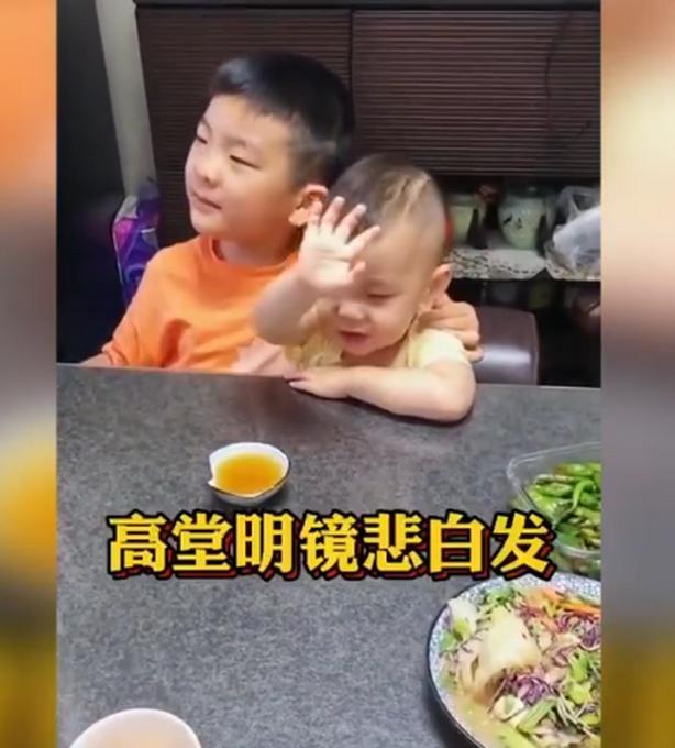 7岁哥哥与2岁弟弟背诵将进酒,妈妈称:一杯沙棘汁喝出了老白干的效果