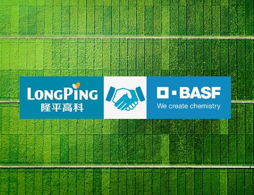 隆平高科与巴斯夫达成合作 共同开发全新非转基因水稻系统
