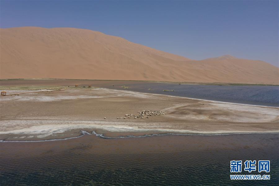 大漠深处 群湖竞艳