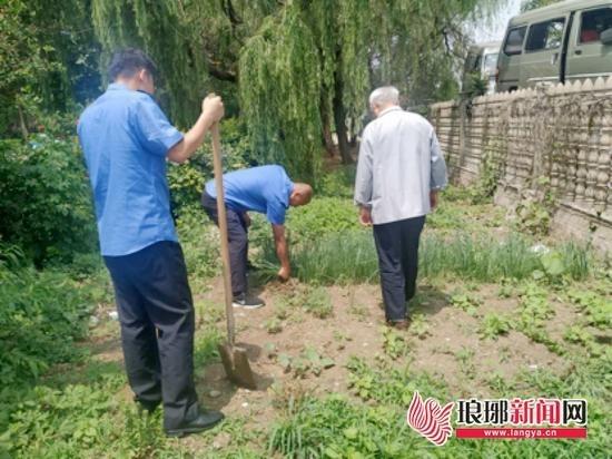 还景于民还绿于民 罗庄开展整治占用公共绿地行动
