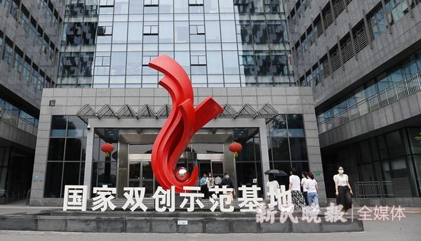 零号湾火了!上海西南角为何成为全球年轻人的创业热土?