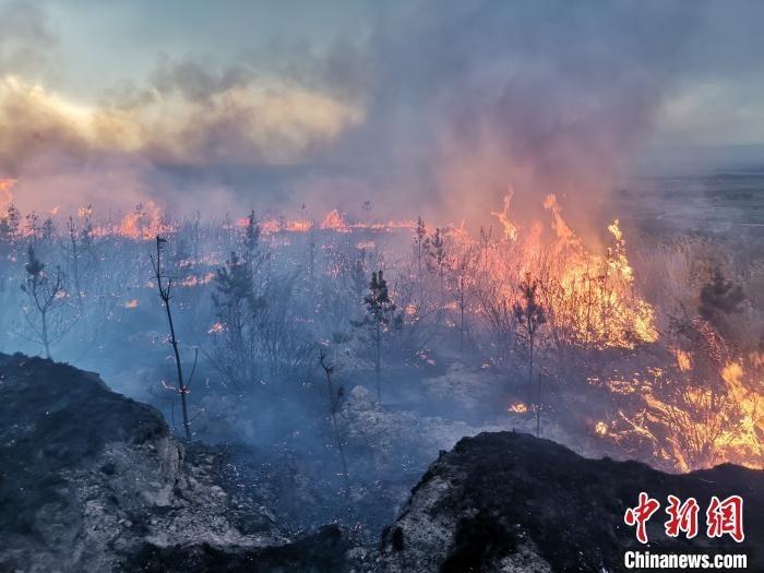 5日11时左右,朔城区发生森林火灾,内蒙古森林消防总队山西驻防分队90余人前往扑救。内蒙古森林消防总队供图